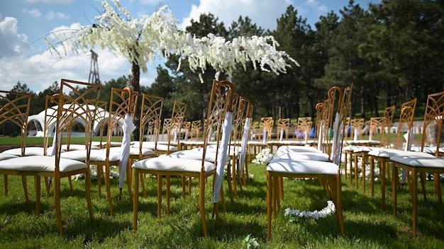 Guarda-chuva festivo de cerimônia de casamento pendurado em uma cadeira vazia no fundo de uma árvore de glicínias
