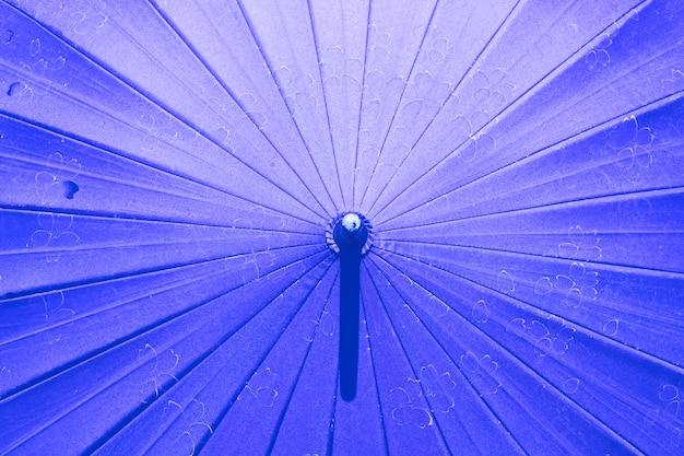 Guarda-chuva japonesa com padrão de sakura.