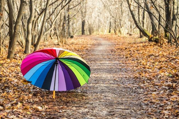 Guarda-chuva multicolorida repousa sobre folhas de outono