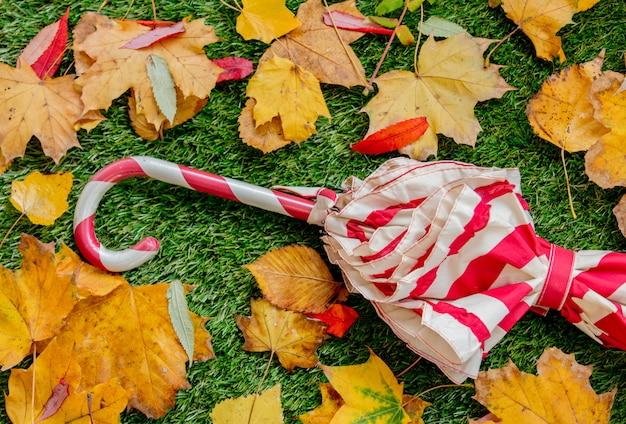 Guarda-chuva vermelho e folhas amarelas no gramado verde