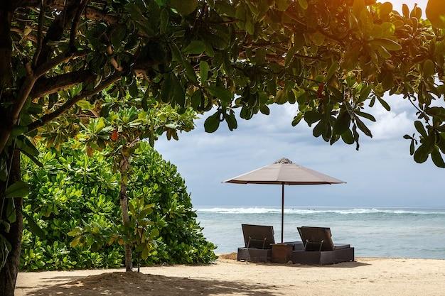 Guarda-sol e espreguiçadeira na praia sob árvores exóticas