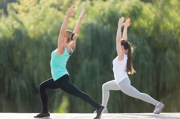 Guerreiro um exercício em par