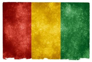 Guiné grunge bandeira