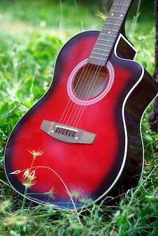 Guitarra na floresta