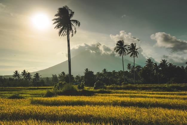 Gunung merapi, um vulcão em java, indonésia