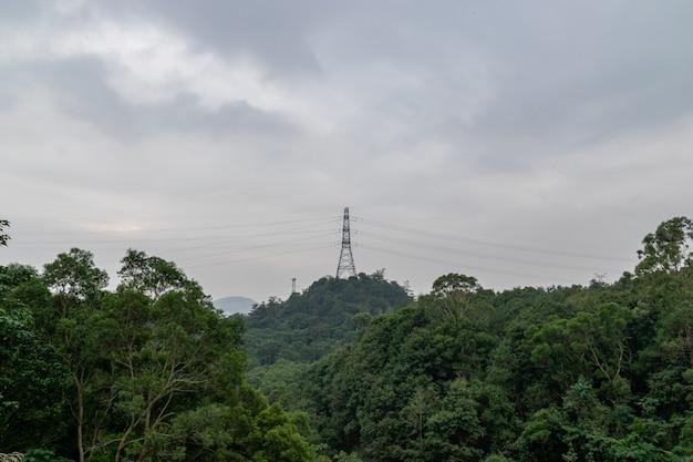 Há nuvens e torres de sinalização na floresta depois da chuva