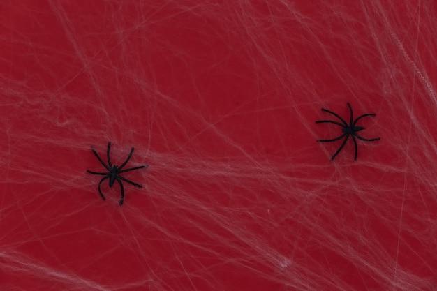 Halloween assustador, decoração. aranhas com teia de aranha em um vermelho. aracnofobia