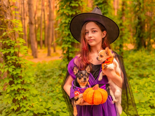 Halloween e celebração. garota com fantasia de bruxa com abóbora de halloween ao ar livre detém um cachorro.