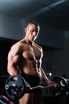 Haltere de formação no ginásio