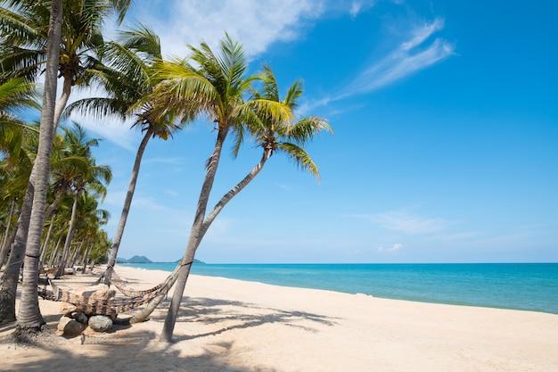 Hammock pendurar na palmeira. paisagem da temporada de verão na praia tropical.