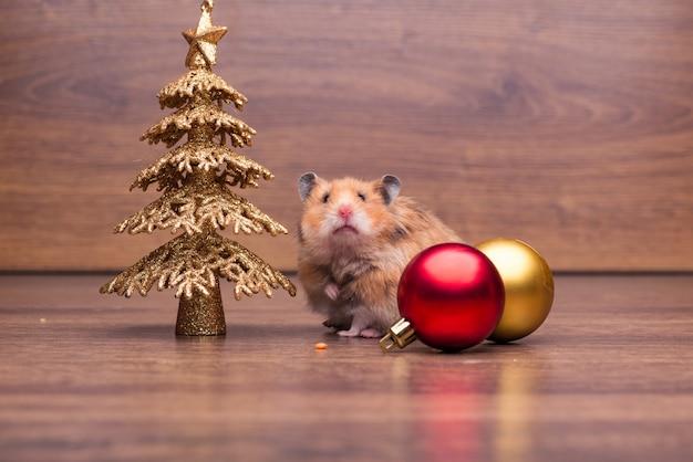 Hamster bonito com chapéu de papai noel na mesa