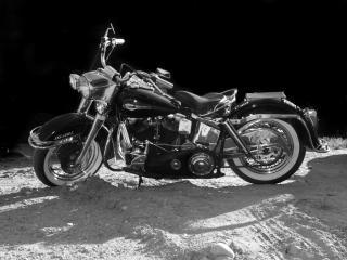 Harley_01