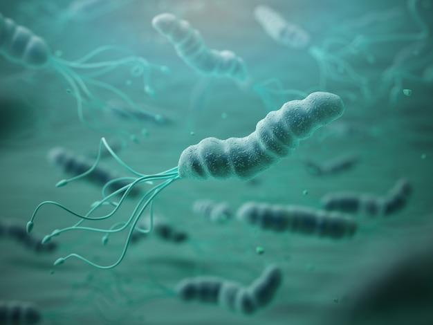 Helicobacter pylori em microscópio.bactreiias. ilustração 3d