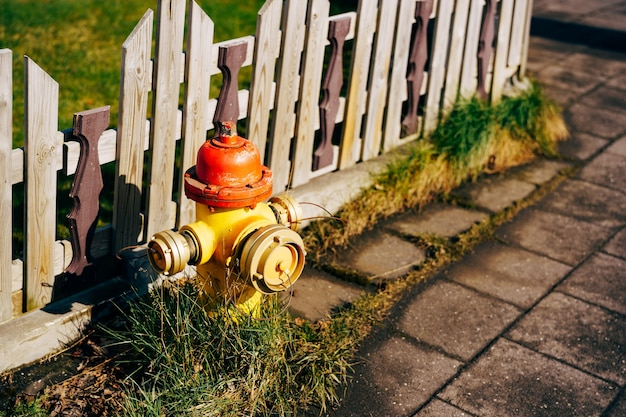 Hidrante amarelo com tampa vermelha e tampas prateadas na grama perto de uma cerca de madeira