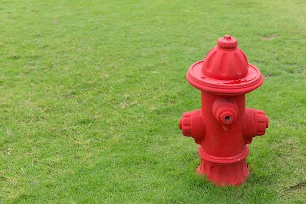 Hidrante de fogo vermelho falso engraçado no campo de grama verde do parque infantil