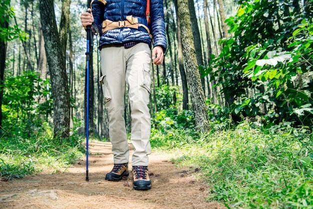 Hiker, homem, com, mochila, e, trekking, polaco, andar