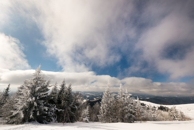 Hipnotizante paisagem de inverno com uma inclinação de neve