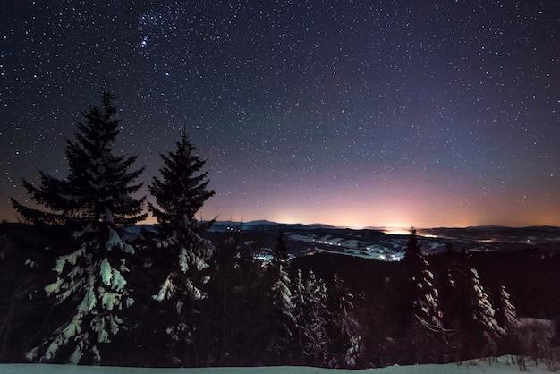 Hipnotizante paisagem noturna com pinheiros nevados