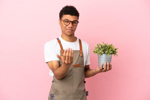 Homem africano jardineiro segurando uma planta isolada no fundo rosa, convidando para vir com a mão. feliz que você veio