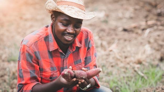 Homem agricultor africano segurando batata-doce fresca na fazenda orgânica com o uso de tablet. conceito de agricultura ou cultivo