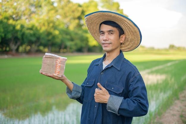 Homem agricultor asiático sorri segurando pilhas de dinheiro de notas tailandesas e o polegar para cima na fazenda de arroz verde.