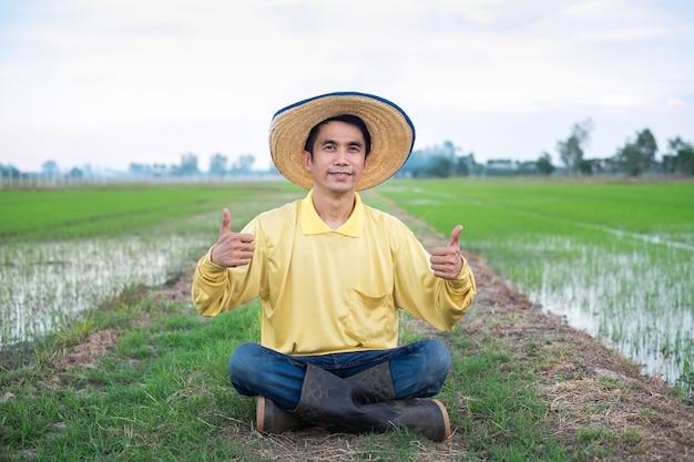 Homem agricultor asiático usa camisa amarela sentado e polegar para cima na fazenda de arroz verde.