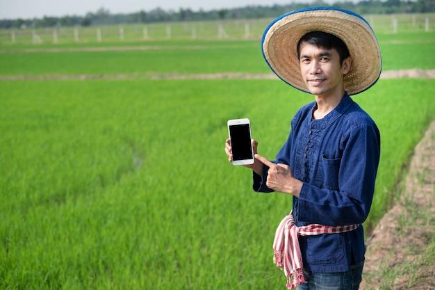 Homem agricultor asiático usa traje tradicional em pé e segurando o smartphone na fazenda de arroz verde.