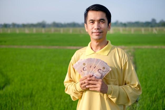 Homem agricultor feliz usa o sorriso de camisa amarela e segurando notas tailandesas na fazenda de arroz verde.