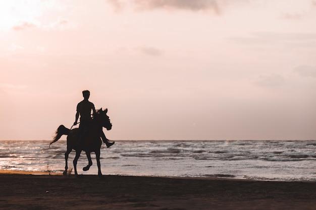 Homem andando a cavalo na praia ao pôr do sol