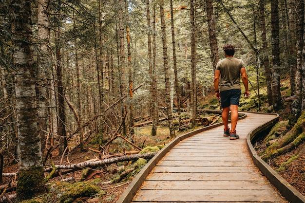 Homem andando através do qual interior de uma floresta