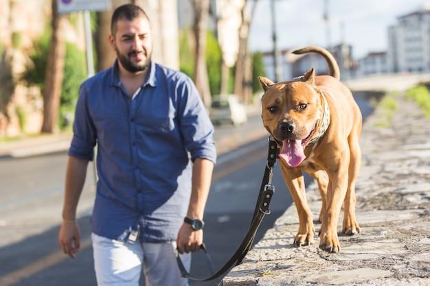 Homem andando com seu cachorro.