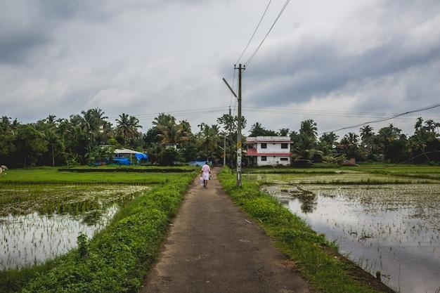 Homem andando por uma longa estrada de volta para sua casa com campos de arroz em ambos os lados