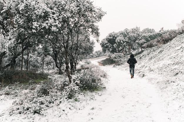 Homem anônimo vestindo uma jaqueta quente, caminhando ao longo do caminho na floresta durante uma queda de neve no inverno e olhando para a câmera