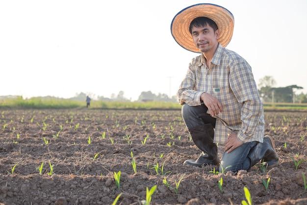Homem asiático, fazendeiro olhando para a produção em uma fazenda de milho