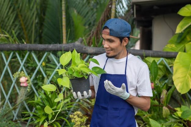Homem asiático feliz de avental em um pequeno centro floral, proprietário de loja de plantas ornamentais man