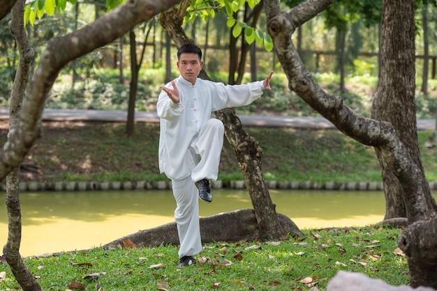 Homem asiático malhando com tai chi pela manhã no parque, artes marciais chinesas