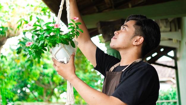 Homem asiático pendurando plantas em casa faz uma bela decoração