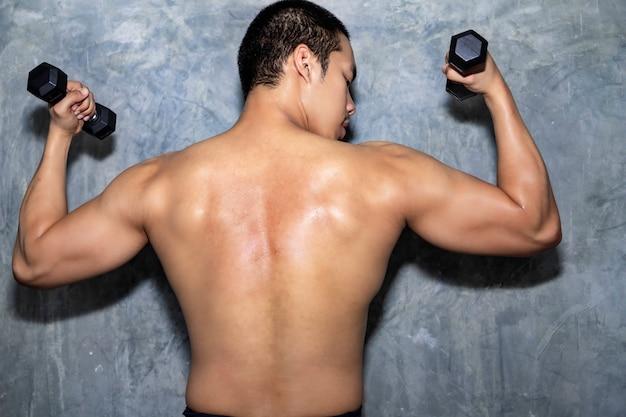 Homem asiático, posar, com, haltere, costas, músculos, tríceps, e, latissimus