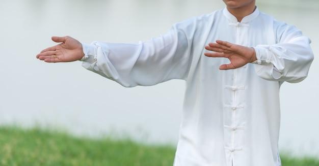 Homem asiático que dá certo com tai chi na manhã no parque, artes marciais chinesas, cuidado saudável para o conceito da vida.
