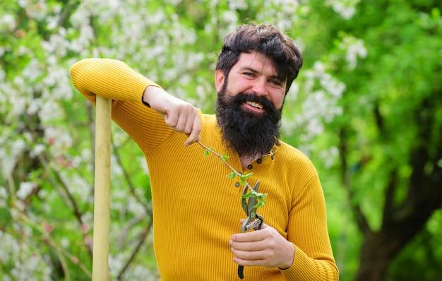 Homem barbudo com tesouras de jardim, trabalho no jardim, primavera, plantas, jardinagem, ecofarme.
