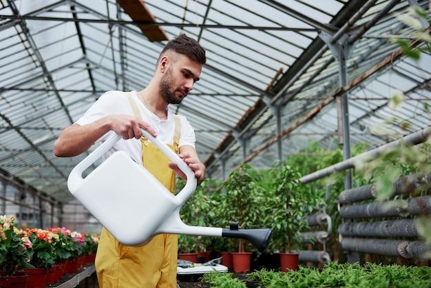 Homem barbudo lindo elegante trabalha em estufa segurando a vasilha com água.