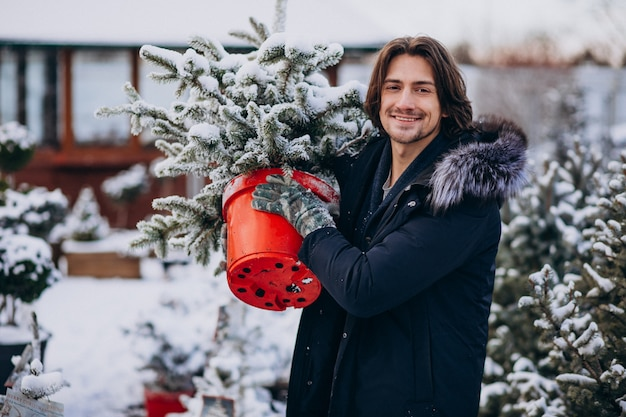 Homem bonito, escolhendo uma árvore de natal