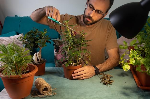 Homem branco de óculos podando e cuidando das plantas da casa
