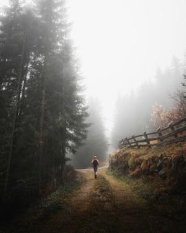 Homem caminhando na floresta enevoada nas dolomitas