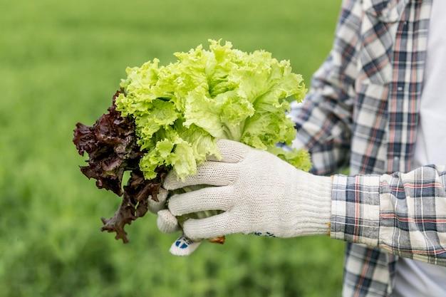 Homem close-up com salada