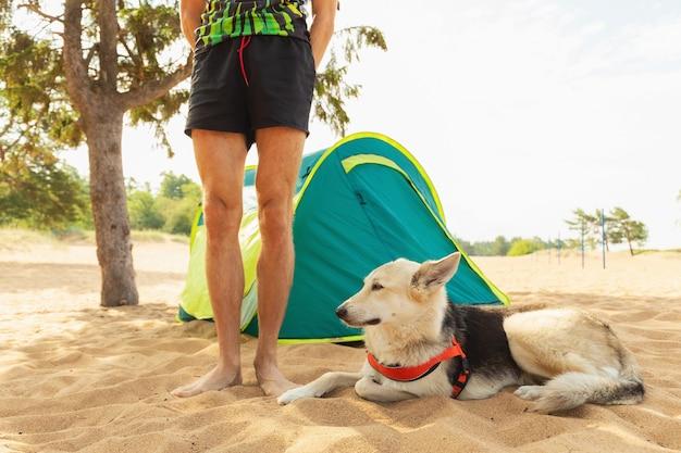 Homem com cachorro perto da barraca sob uma árvore em uma praia arenosa