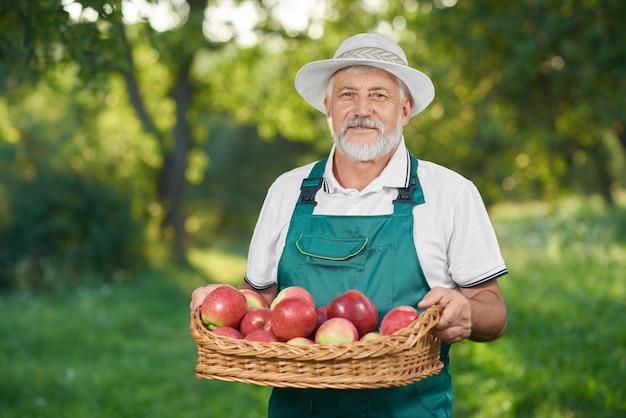 Homem com mostrar a colheita, segurando a cesta cheia de maçãs deliciosas vermelhas.