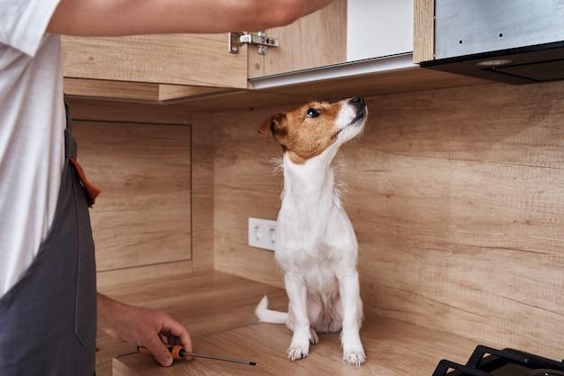 Homem com um cachorro consertando o armário da cozinha