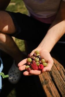 Homem com um punhado de frutas frescas na mão dia de sol no verão coletando frutas no mato