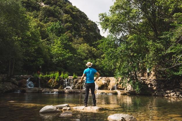 Homem contemplando a grandeza da floresta